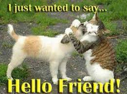 Cute Friend Memes - cute hello memes image memes at relatably com