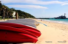 tangalooma island activities moreton island accommodation