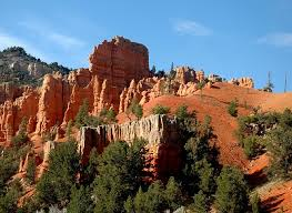 Utah forest images Dixie national forest utah jpg