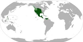 Blank Map Of Spain by File Map Of The Viceroyalty Of New Spain Svg Wikimedia Commons