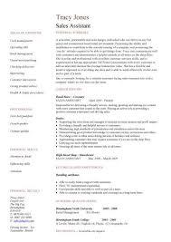 Sales assistant CV template