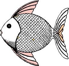 fish love art coloring book colouring sheet page intelligentsia