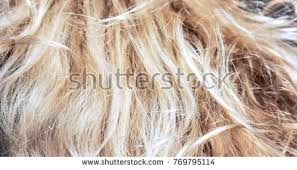 frosting hair hair frosting stock images royalty free images vectors