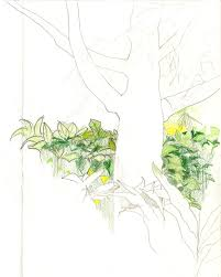 great garden sketchabout 22 sketching trees gasp