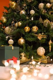 aspirin in christmas tree water christmas ideas