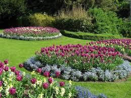 immagini di giardini fioriti fiori per giardino estivo schiavi