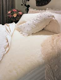 Bed Toppers Top 10 Mattress Toppers Ebay