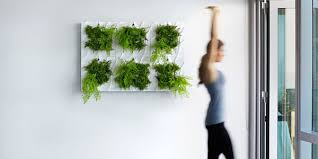 indoor living wall planter u003d easy vertical gardening