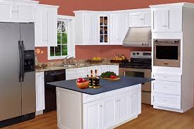 Shaker Kitchen Cabinet by Arcadia White Shaker Kitchen Cabinets Bargain Outlet