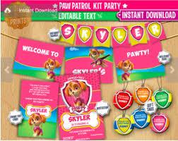 Paw Patrol Cake Decorations Paw Patrol Birthday Party Planning Ideas U0026 Supplies Children U0027s