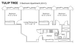 3 bedroom apartment floor plan iu rps tulip tree apartments