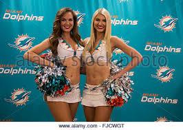 Seeking Miami Miami Dolphins Allison Must Credit Miami Stock Photo