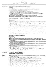 sle resume for business analysts degree celsius symbol identity access management resume sles velvet jobs