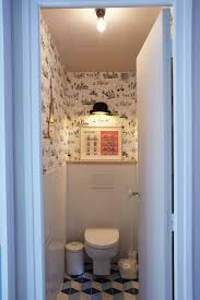 Bathroom Mural Ideas by 112 Best Wc Ideas Images On Pinterest Toilets Bathroom Ideas