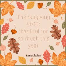 thanksgiving 2016 thankful for so much this year and i m