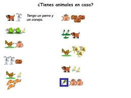 spanish animals u0026 colours los animales y colores by