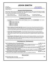 sample resumes for professionals download professional resume
