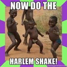 Success Meme Generator - image 495617 harlem shake know your meme