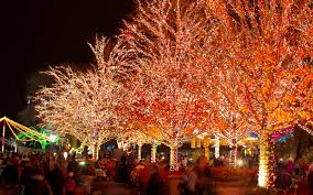Toledo Zoo Christmas Lights by Lincoln Park Zoo Christmas Lights Christmas Lights Decoration
