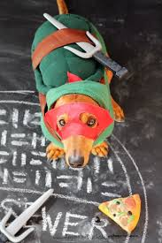 Halloween Costumes Dachshunds 10 Awesome Diy Halloween Costumes Dogs Ammo Dachshund