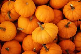 easy halloween decor for around your home ahrn com