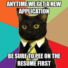 New Cat Meme - business cat anytime we get a new application be sure to pee on