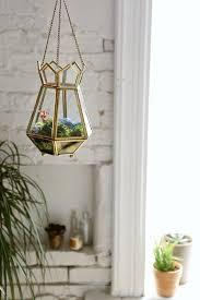 179 best terrarium images on pinterest plants terrarium ideas