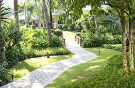 Tree Ideas For Backyard 30 Spectacular Backyard Palm Tree Ideas