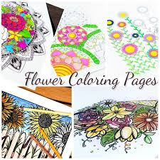 5 free flower coloring pages for adults u2013 indie crafts