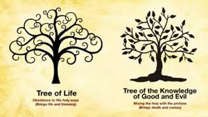 the eternal choice the tree of vs the tree of knowledge