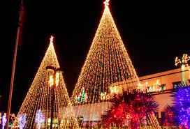 Professional Christmas Tree Decorators Christmas Decor Professional Christmas Light Installation And