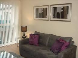 incredible decorating ideas for 1 bedroom apartment u2013 cagedesigngroup