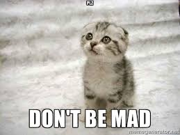 Dont Be Mad Meme - plz don t be mad the favre kitten meme generator