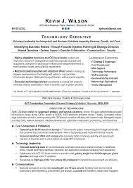 sample cio resume doctor resume template cio resume sample pdf
