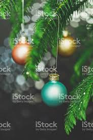 pastel colored ornaments on tree branches