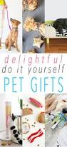 the 33 best images about gifts for pets on pinterest