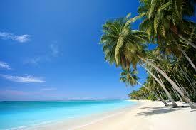 beach scenes wallpaper and screensavers wallpapersafari