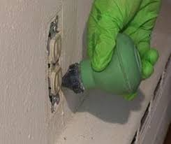 Will Heat Kill Bed Bugs Understanding Bed Bug Treatments Let U0027s Beat The Bed Bug