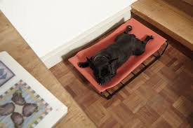 Laminate Floor Accessories Modern Dog Beds And Accessories From Howlpot Dog Milk