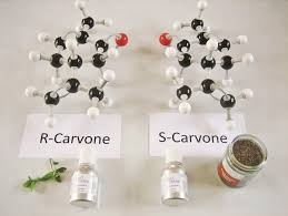 organic chemistry smelly and difficult cpd education in