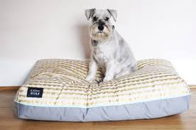 Doggie Beds Review Colorful Patterned Dog Beds From Lion Wolf Dog Milk