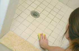 Types Of Mold In Bathroom by Remove Bathroom Mold Alluring Mold In Bathroom Bathrooms Remodeling