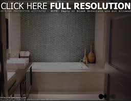bathroom remodeling ideas 2014 best bathroom decoration