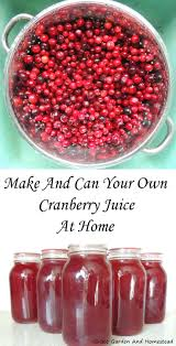 Cranberry Island Kitchen by Best 25 Cranberry Juice Ideas On Pinterest Christmas Drinks