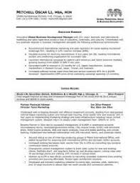 resume format logistics executive resume format microsoft office