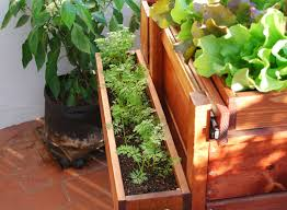 growing vegetables in containers organic container gardening