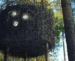 tree hotel sweden bird s nest bedrooms tree hotel