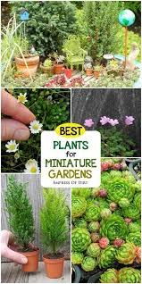 Fairy Garden Craft Ideas - the 25 best fairy gardening ideas on pinterest fairies garden