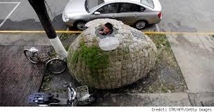 underground tiny house beijing architect lives in egg shaped house on sidewalk