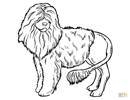 poodle dog coloring free printable coloring pages